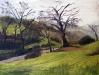 Placerville Landscape